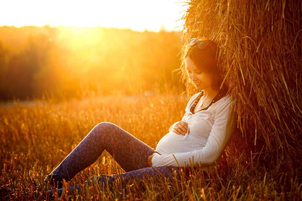 pregnant by haystack