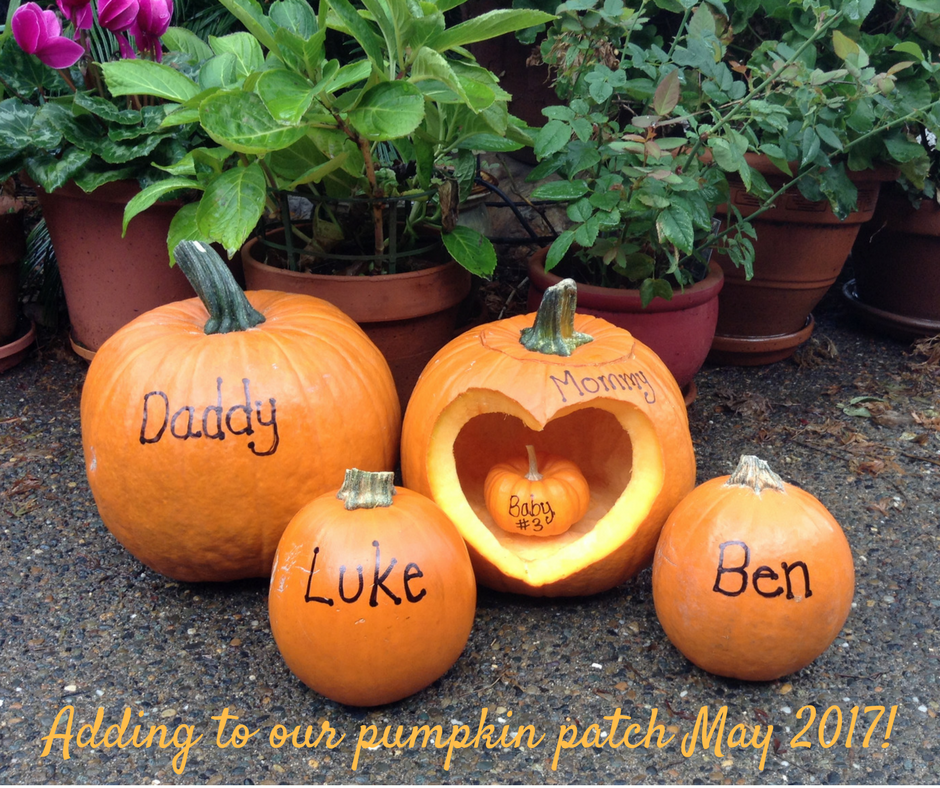 adding-to-our-pumpkin-path-may-2017-2